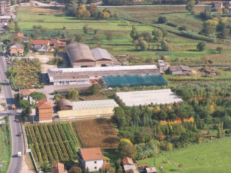 Vivaio Forestale Lazio : Andar per vivai da bolsena a tivoli lazio italian botanical